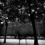 Palais-Royal-viel-homme-01