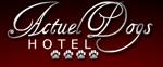 De l'hôtellerie pour chiens
