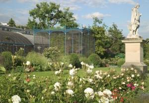 jardin-acclimatation12