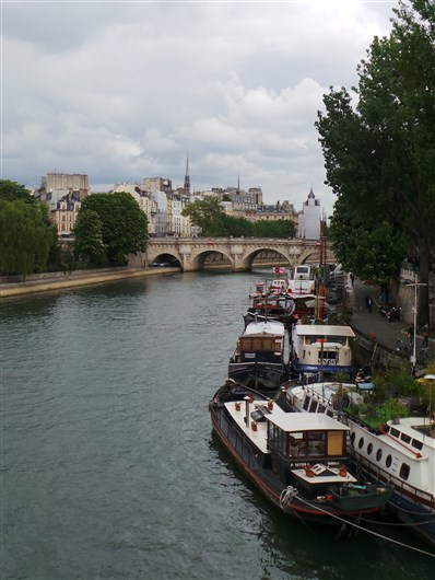 Vue depuis le pont des arts_Paris 6e_280414